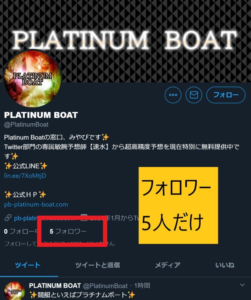 プラチナムボート(platinumboat)14