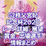 秩父宮妃記念杯2020(G2第63回結核予防事業協賛)アイキャッチ