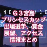 宮島プリンセス20201アイキャッチ