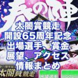 太閤賞競走2021開設65周年記念(住之江G1)アイキャッチ
